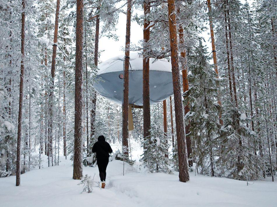 UFO Treehotel Harads Swedish Lapland