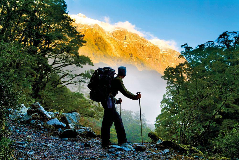 Trekking, Milford Sound, South Island, New Zealand