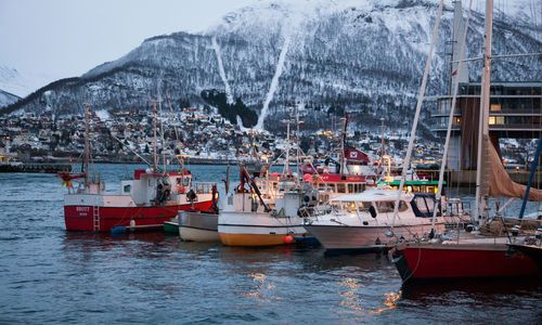 Best things to do in Tromso