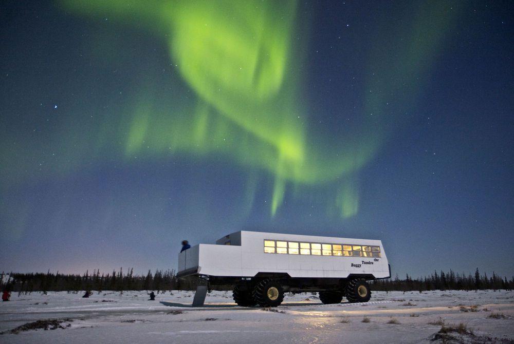 Tundra Buggy Northern Lights