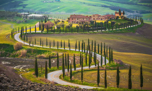 Road through the tuscan countryside