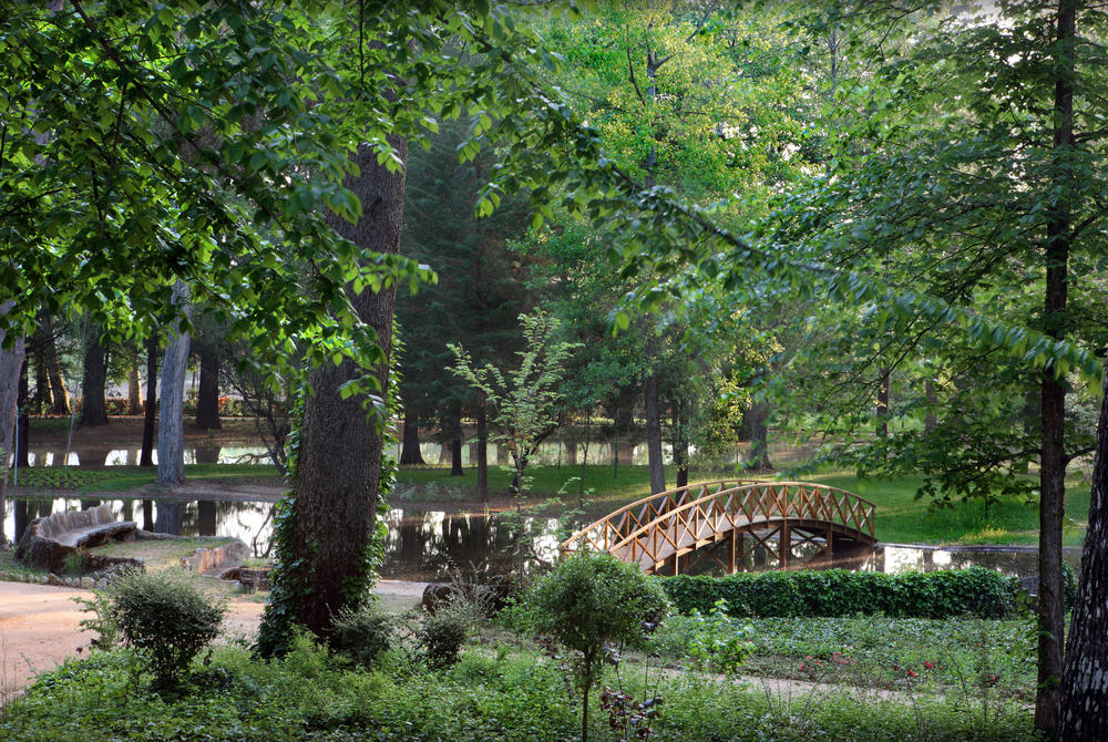 Vidago Park, Vidago Palace