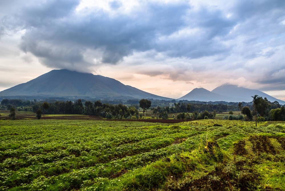 Virunga volcano, Rwanda