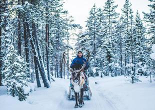 Vuojan reindeer excursion, ICEHOTEL (Credit: Asaf Kliger)