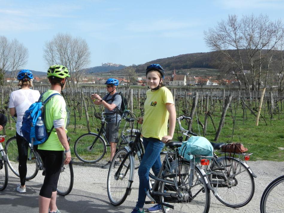 Wachau cycling tour on AmaWaterways
