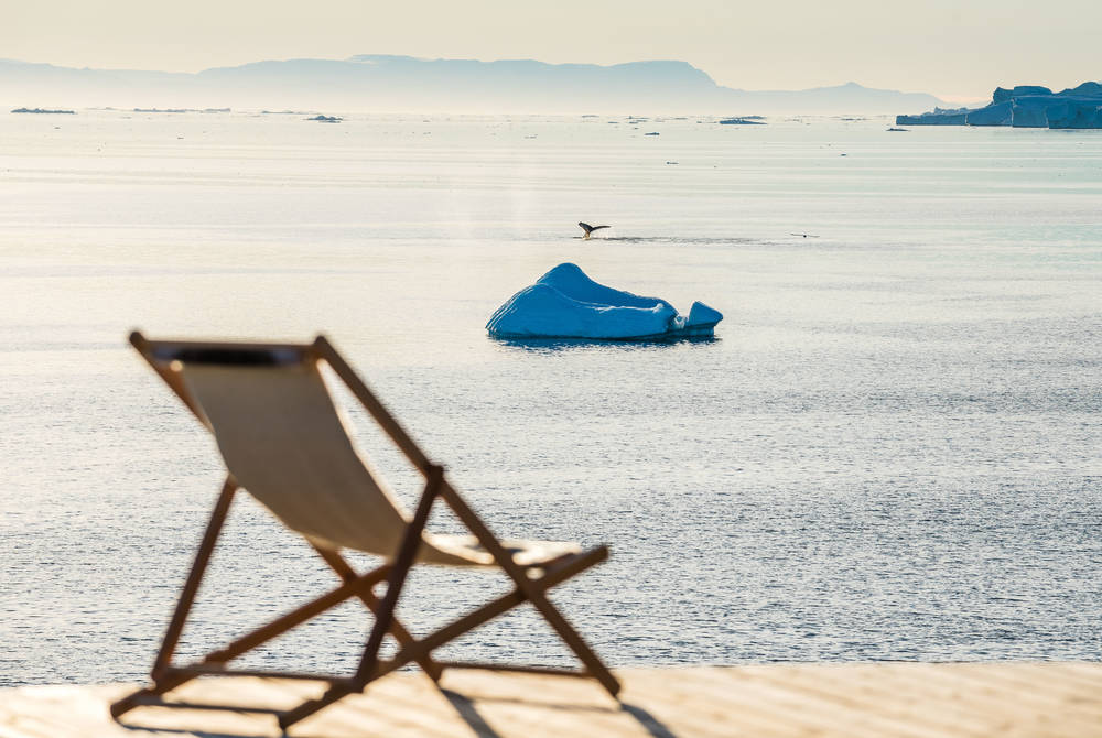 Whale seen from Ilimanaq Lodge, Ilulissat Icefjord