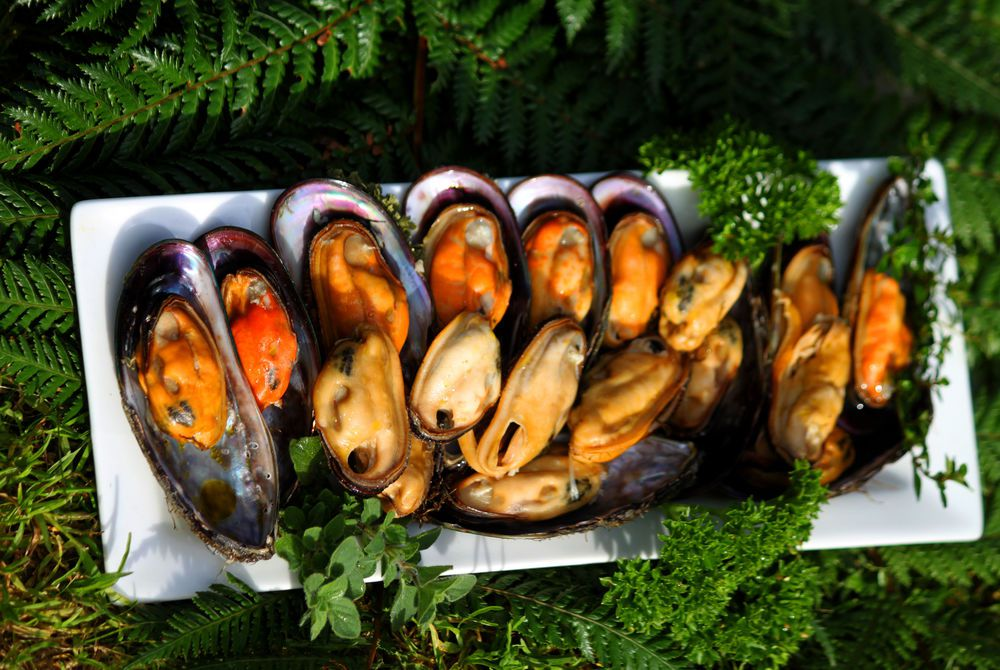 Wilderness Lodge manuka smoked green shell mussels, New Zealand