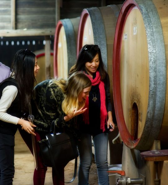Winery tour at Hunter Valley