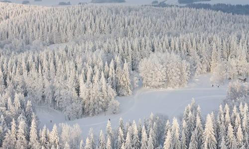 Ice Skating Holiday on Lake Saimaa, Finland
