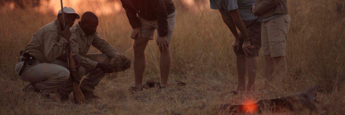 &Beyond Sandibe Okavango Safari Lodge, Chitabe Concession