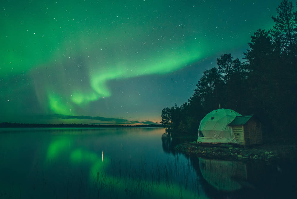 Aurora Dome, Harriniva