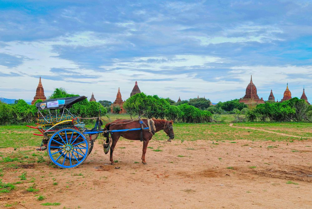 Horse and carriage transport in Bagan