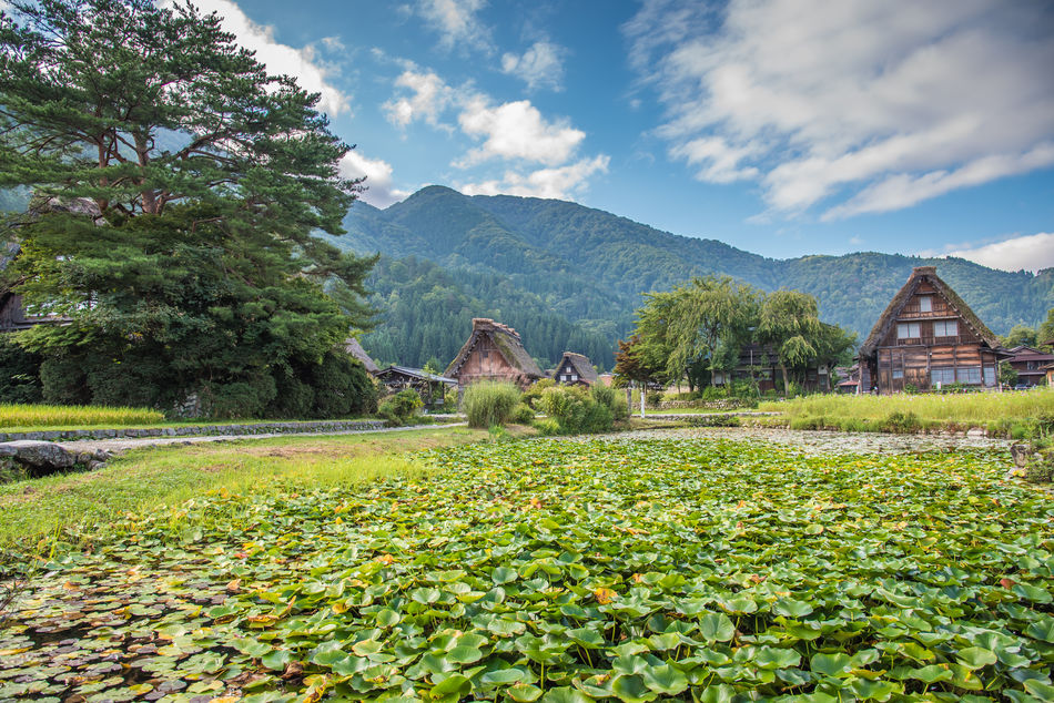 Shirakawa - Japan tailor-made holidays