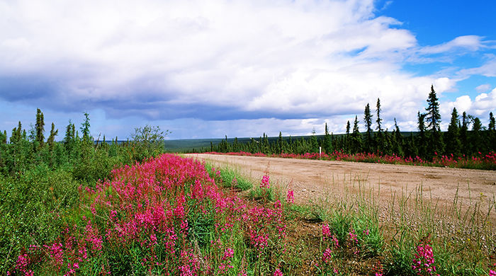 The Dempster Highway, Yukon