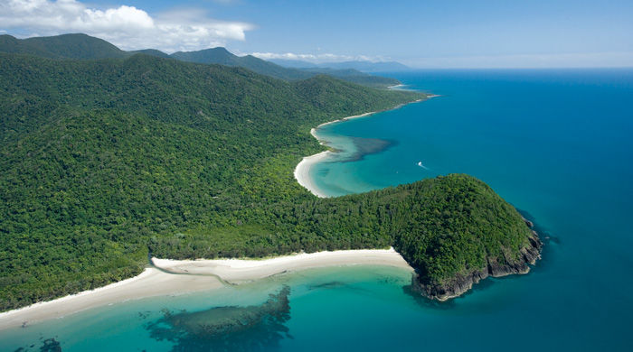 Cape Tribulation, Queensland, Australia