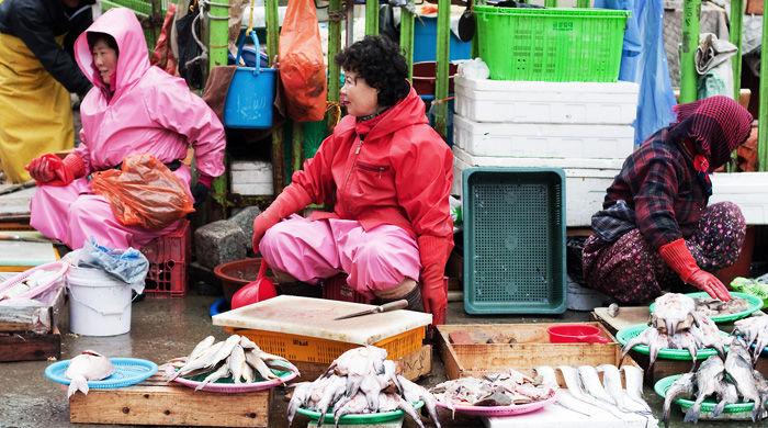 Busan's fish market, South Korea