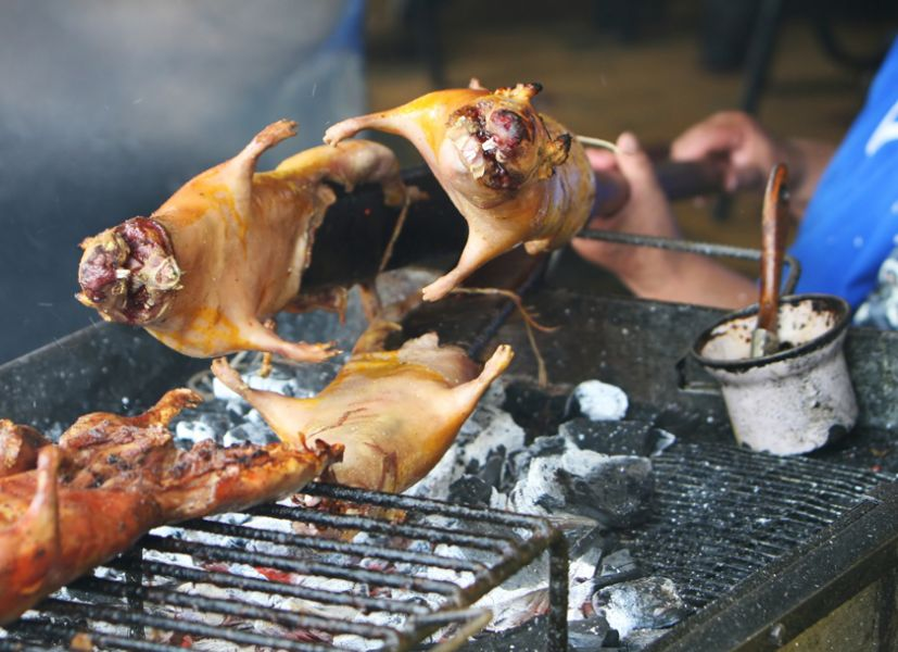 Cuy, guinea pig, Latin America traditional food