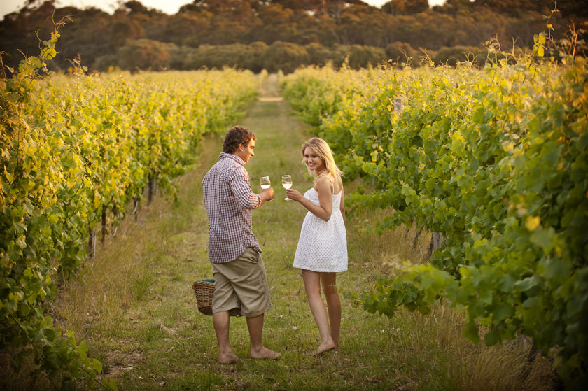 vineyards in the Margaret river region
