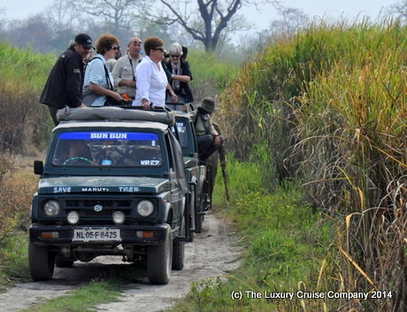 Jeep Safari, Kaziranga National Park