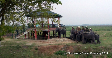 The Elephant Boarding Tower, Kaziranga National Park
