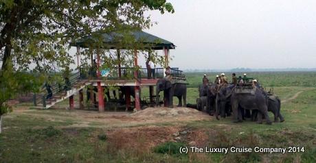 The Elephant Boarding Tower, Kaziranga National Park