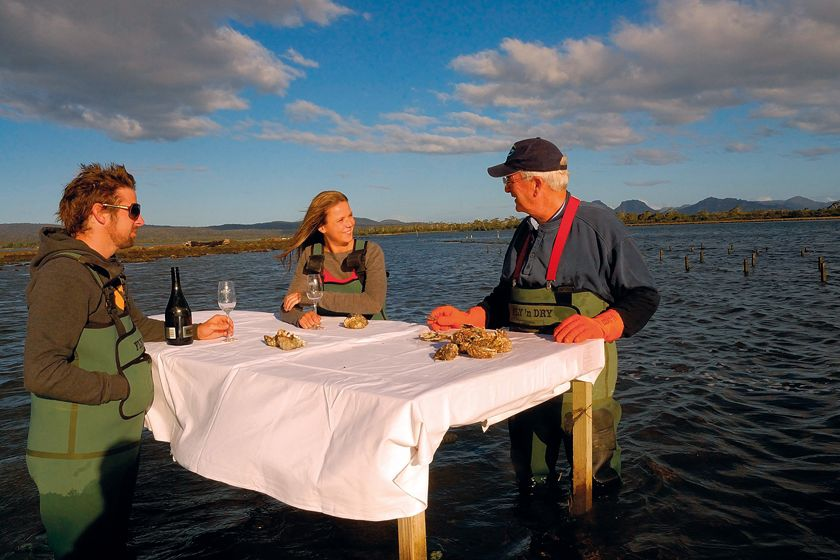 Oyster tasting, Freycinet National Park