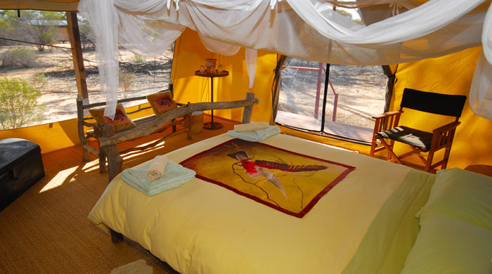 Luxury tent, Kangaluna Camp, Gawler Ranges