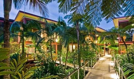Byron rainforest