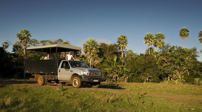 Photo safari, Caiman Ecological Refuge, Brazil