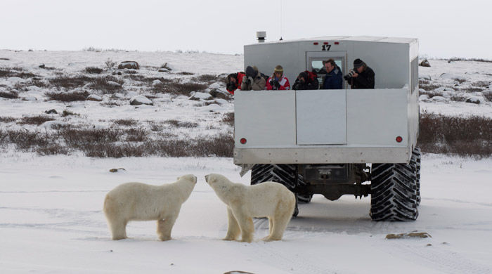 Tundra Buggy, Churchill, Canada - image courtesy of Bob Debets