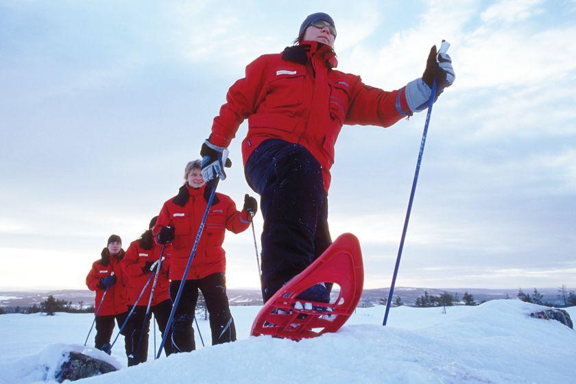 Snowshoeing, Harriniva