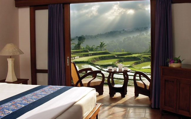 Rice terrace view, Ijen Resort & Villas