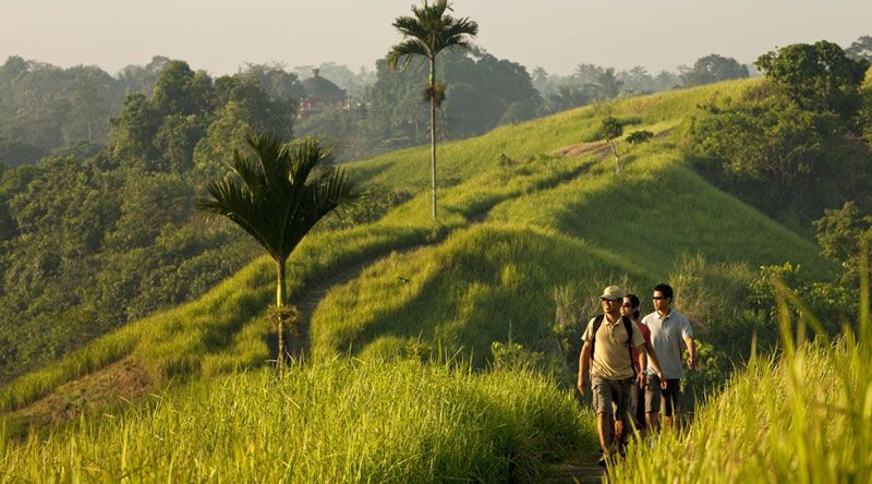 Morning walk, Uma Ubud
