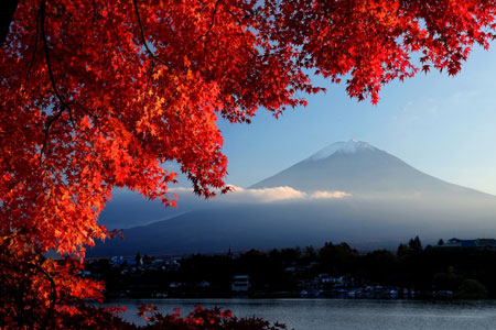 Japan Fuji Fall colours