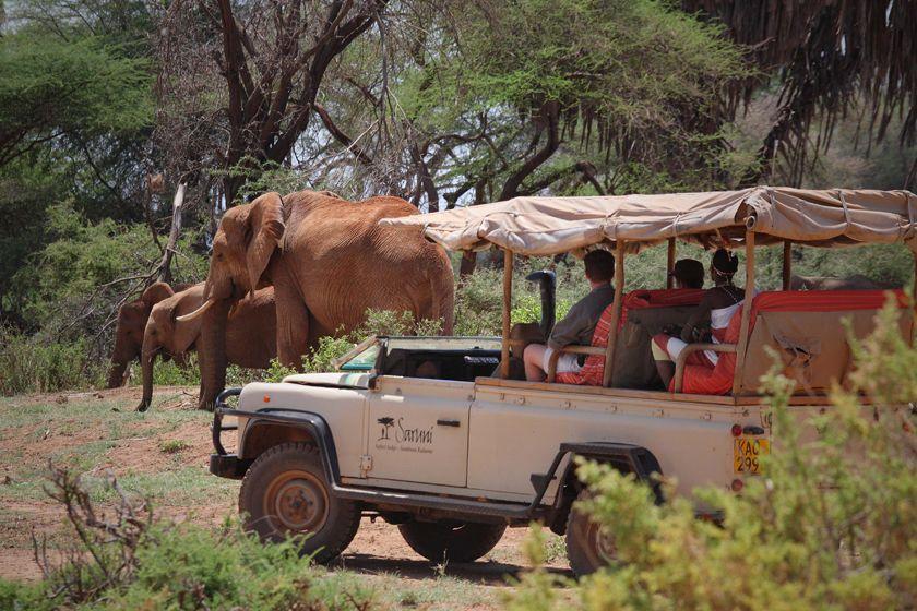 Saruni Samburu, Kenya