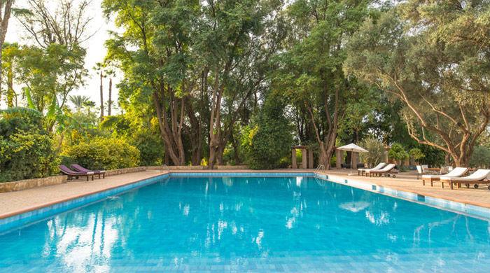 Pool, La Gazelle D'Or, Morocco