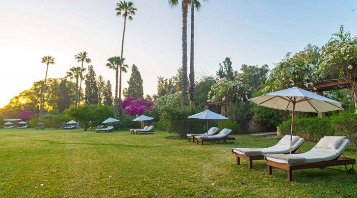 Gardens, La Gazelle D'Or, Morocco