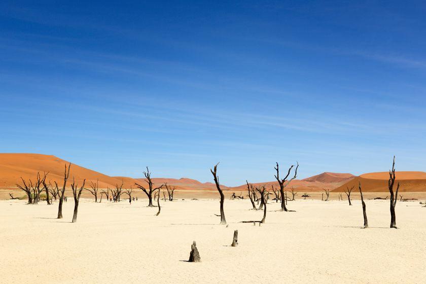 Sossusvlei dunes and desert, Namibia
