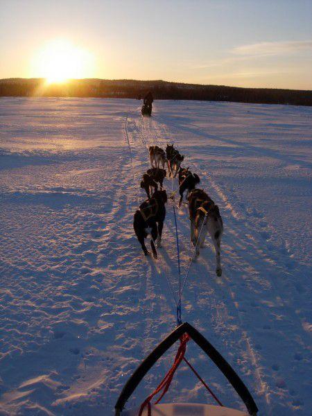 Husky Ride, Kirkenes