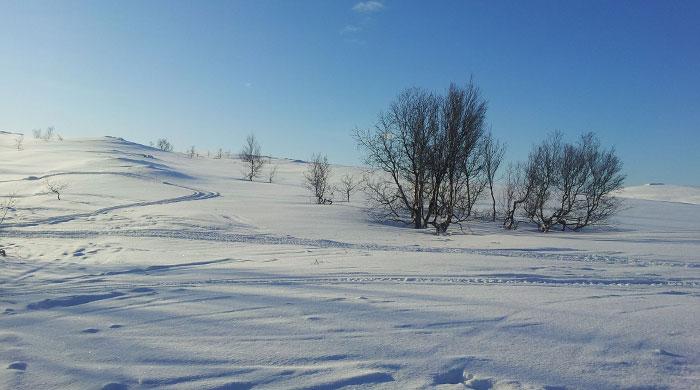 Frozen landscape near Ongajok Mountain Resort