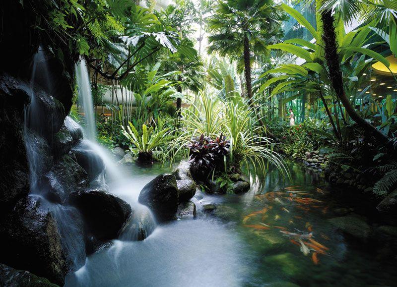 Koi Pond, Garden Wing, Shangri-La Hotel Singapore
