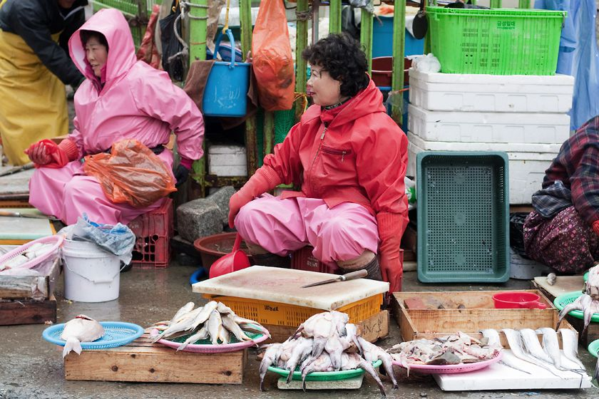 Busan fish market, South Korea