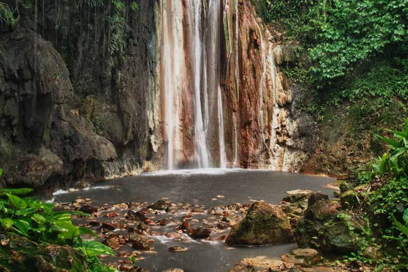Botanical Gardens, St Lucia