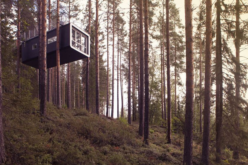 Cabin at Treehotel, Sweden