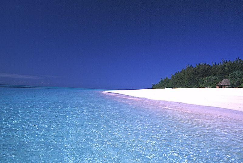Beach at Mnemba Island