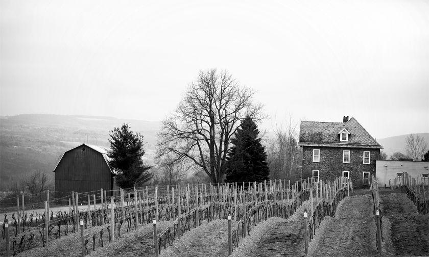 Dr Franks Winery - Finger Lakes NY