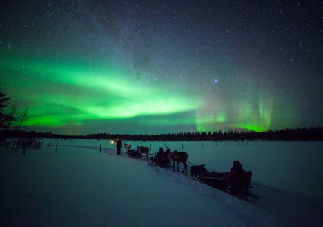 Reindeer sledding and Northern Lights, Torassieppi